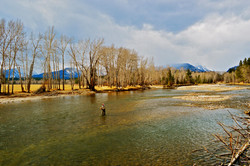 Bitterroot River Fly Fishing