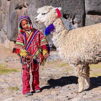 boy llama.jpg