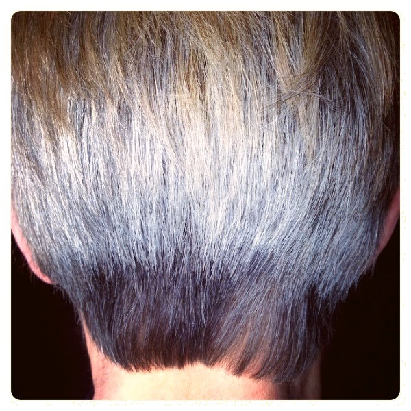 Grey Hair, Don't Care!
