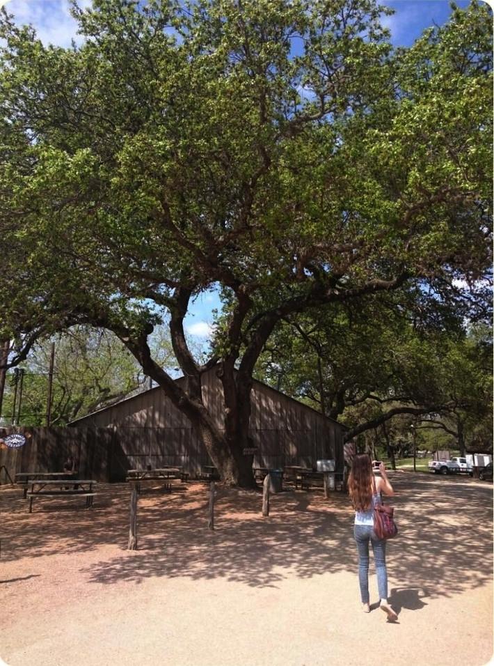 Luckenbach, Texas's Tiniest Town