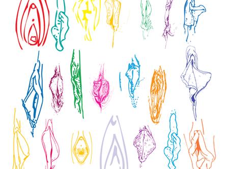 Então, o que é uma vulva ?
