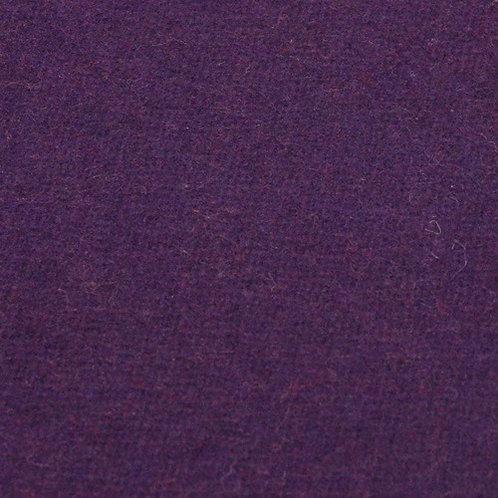 Medium tabby-purple