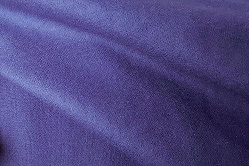 Medium tabby-blue 2