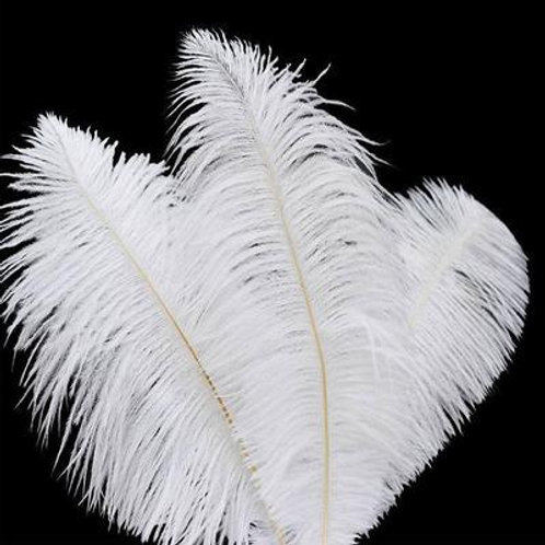White ostrich feather 35-40cm
