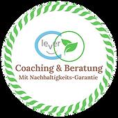 nachhaltigkeit-coaching-beratung.png