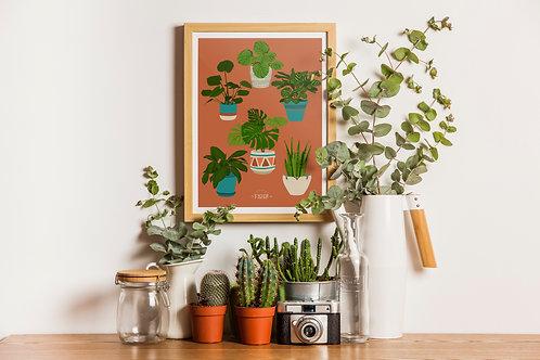 Poster : Les plantes
