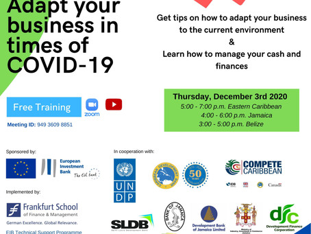 Upcoming Event: Adapting your business in times of COVID-19