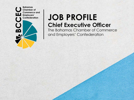 Job Profile: Chief Exectuive Officer Opportunity