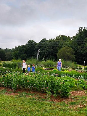 Community members work in garden