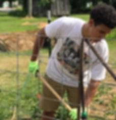 boy works in garden