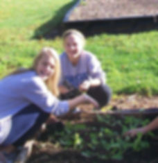 Children plant greens in a raised bed