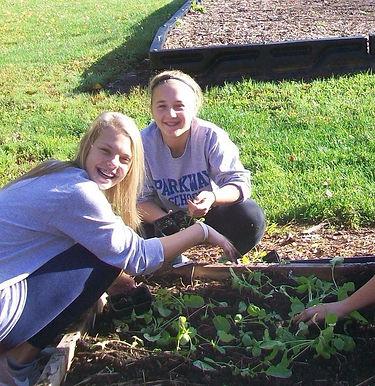 Girls plant seedlings in garden.