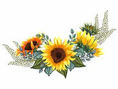 beautiful-floral-collection-sunflowersle