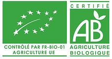 logo_ue-ab-003.jpg