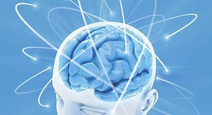 brain_neurons_web-b5cd6ce7.jpeg