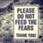 dont feed the fears.jpg