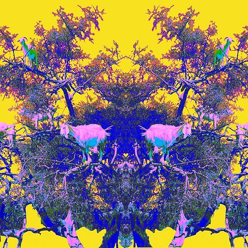 Pink Tree Goats