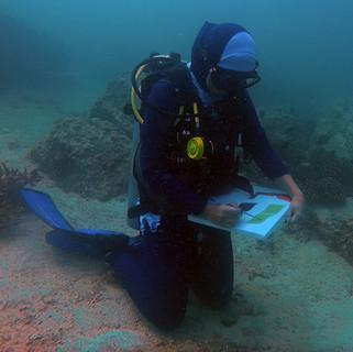 Maisoon Al Saleh painting under seawater