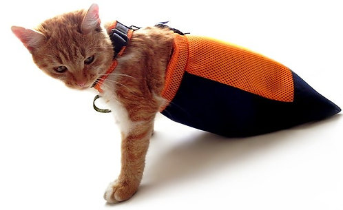 Drag bag for pets Frakishtak