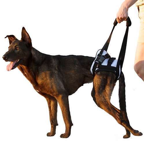 Dog Rear Harness Frakishtak