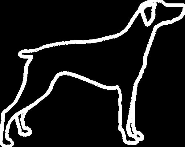 dog_contur.png