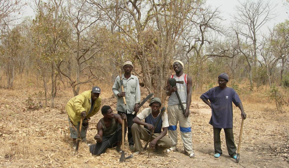 Woodcutters of Tambacounda