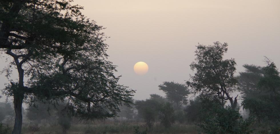 Sahel Sunrise