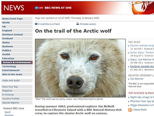 On the trail of the Arctic wolf