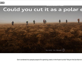 Could you cut it as a polar explorer?