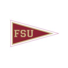 FSU Flag