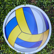 Color Volleyball