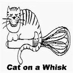 Cat on a Whisk