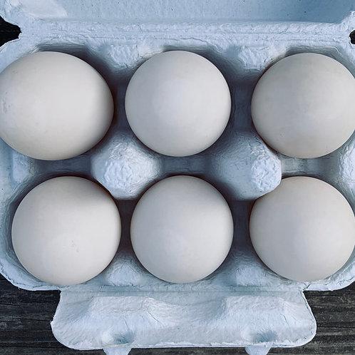 6 Duck Eggs