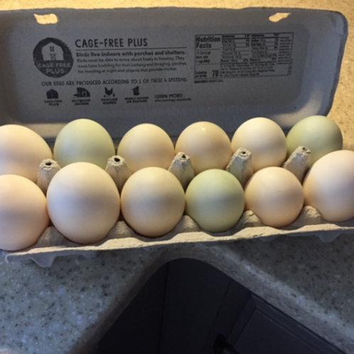 12 Duck Eggs