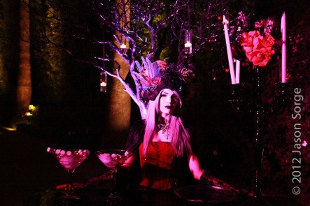 0485_Jason_Sorge_Photography_Camille_Costume_Party_2012_10_27_900x.jpg