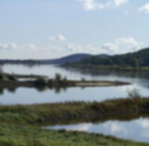 Die Elbtalaue hier prägt die Natur eine Landschaft entlang der Elbe