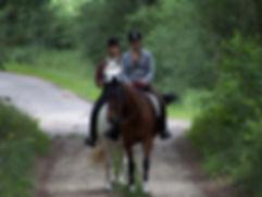 Reiten durch die Elbtalauen, Urlaub mit dem Pferd, herrliche Ausritte durch die Natur an der Elbe nahe Hamburg