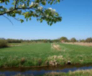 Die Marschhufenlandschaft findet man in den Elbtalauen entlang der Elbe, sie rägen dort die Landschaft und Natur.