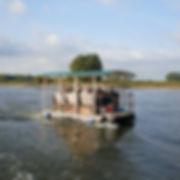 Die Elbe Schifffahrt biete viele Möglichkeitendie Natur und Landschaft von der Wasserseite aus zu erleben, z.B. mit dem Kanu auf der Elbe, mit dem Floß, mit der Fähre oder mit dem Fahrgastschiff.
