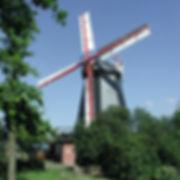 Radweg vorbei an der Bardowicker Mühle mit toller Landschaft