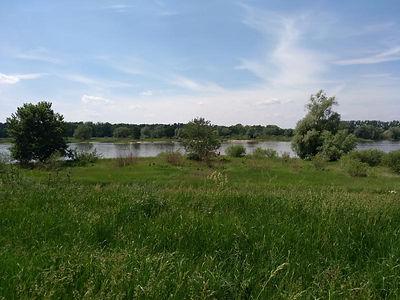 Elbe Cycle Path - Biosphere Reserve