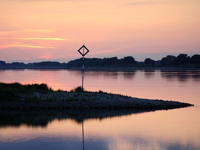 Nature of the Elbe - evening light