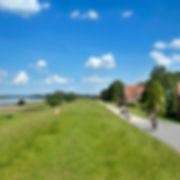 Radweg am Deich an der Elbe, Radtour an der Elbe und die Landschaft erleben