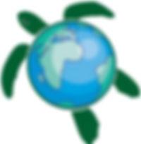 turtle world.jpg
