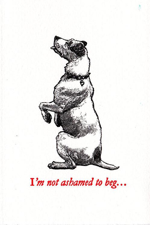 Not ashamed to beg