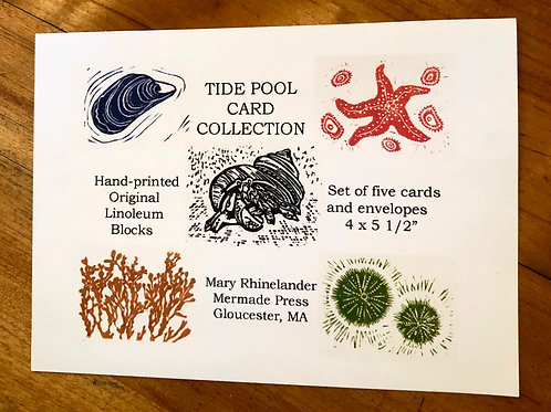 Tide Pool Collection