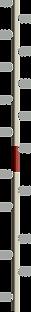linha _do_tempo_vertical_2021_mobile.png
