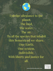 I pledge Allegiance to the planet.png