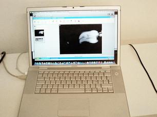 Sistematica digitale Schick