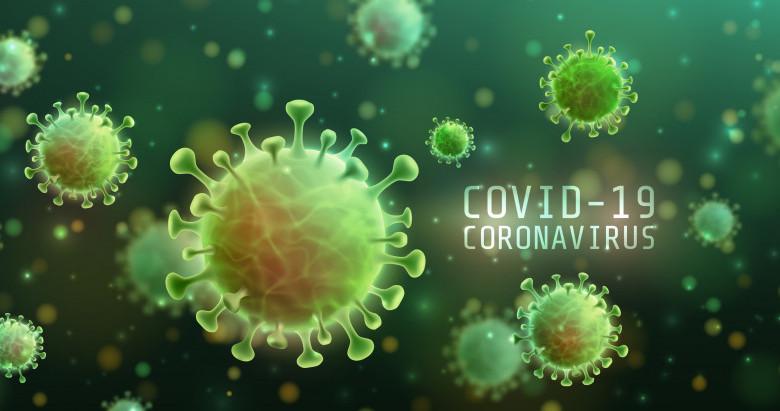 Situația COVID-19 la zi în județul Hunedoara: 161